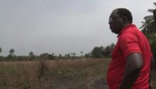 Lappé Bangoura, coach de la Guinée au CHAN