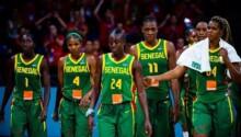 Lionnes du Sénégal