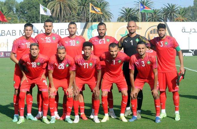 Les lions locaux du Maroc